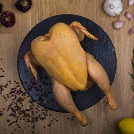 pollo-rustico-manchego-paasa-02